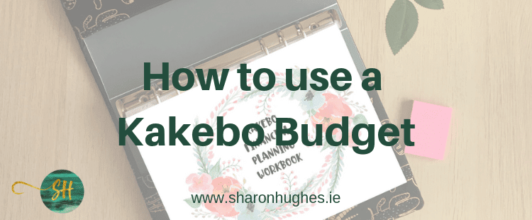 How to use the Kakebo Budget